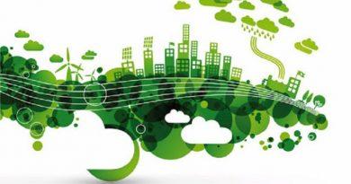 Certificaron empresas roquenses como sostenibles