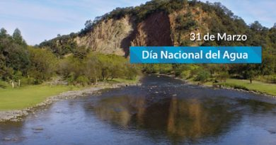 31 de Marzo: Día Nacional del Agua